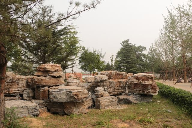 唐山植物园进行景观石调整和摆放